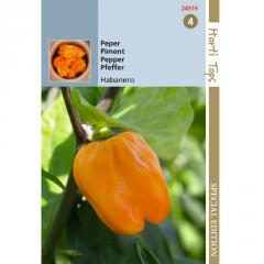 Semena - CHILLI PAPRIČKY ´HABANERO ORANGE´